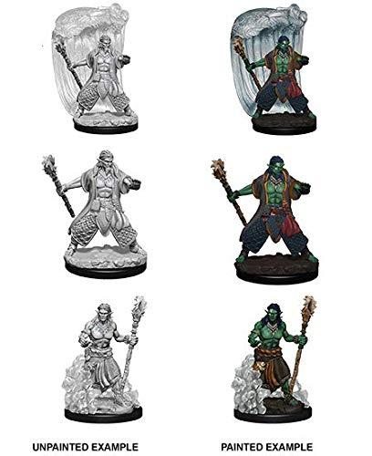 Female Water - D&d Nolzur's Marvelous Miniatures - Water Genasi Male Druid