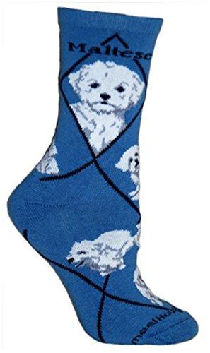 Maltese Puppy Dog Animal Socks On Blue - Maltese Womens
