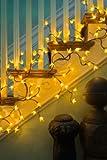 Pbk Forsythia Twig Lighted Garland Indoor