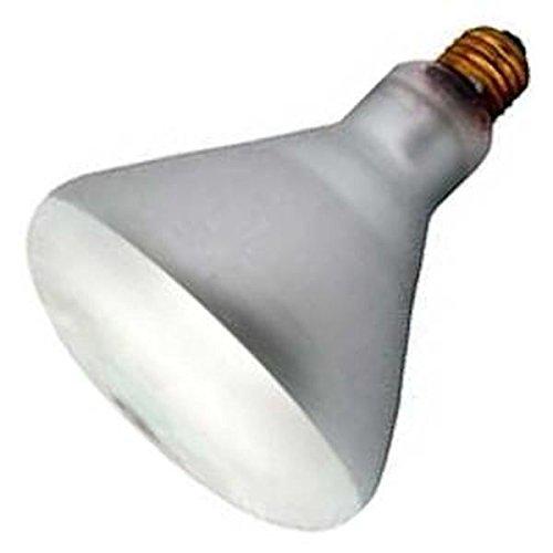 - Damar 04825-120BR40FL/RS 130V #04825E Reflector Flood Light Bulb