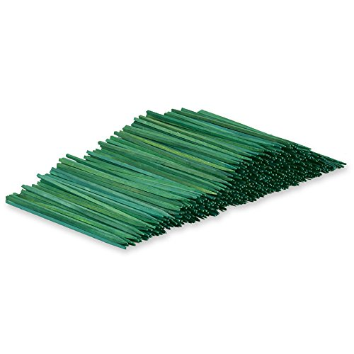 Green Funeral Plant (Wooden Floral Plant Support Craft Picks Green Wood Stakes 100 Count w/ Flower Crafting eGuide (4 Inch))
