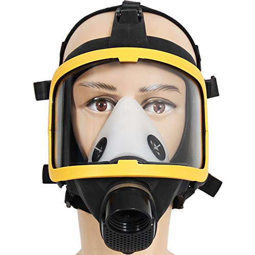 Electric Constant Flow Air Mask, FDA Tested Full Face Mask Respirator, Powered Respirator PAPR Mask, Good Quality Filter by Trudsafe (Image #3)