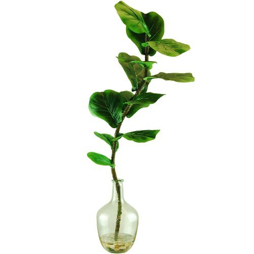 Ebern Designs Desktop Fiddle-Leaf Fig Plant in Round Tapered Bottle from Unknown
