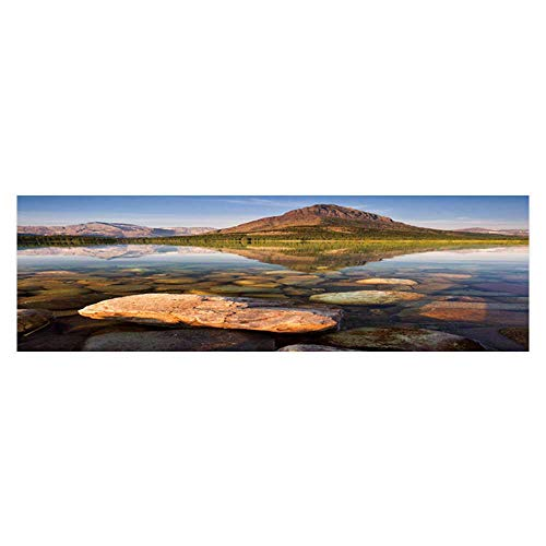 Dragonhome Background Poster Morn at swiftcurrent Lake in The Many Glacier Area of Montana PVC Aquarium Decorative Paper L29.5 x H17.7