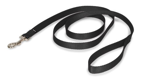 "PetSafe Nylon Leash 3/4"" x 6', Black"