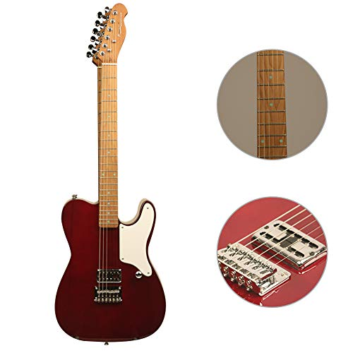 ZUWEI Semi Hollow Body Electric Guitar with Roasted Maple Neck, Alnico Pickups and Bone Nut, Trans Wood Body, with Gig Bag and Cable (Trans Red)