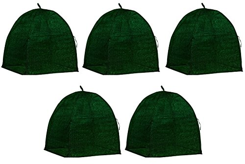 NuVue 20253 36'' x 36'' x 38'' Green Frost Proof Winter Shrub Protector Covers - Quantity 5 by Nuvue