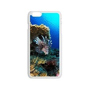 Liparidae Hight Quality Plastic Case for Iphone 6