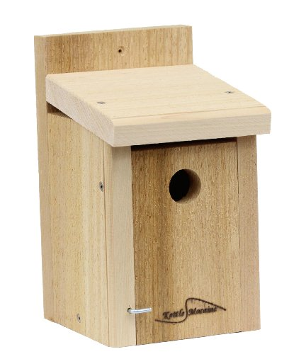 Kettle Moraine Wren & Chickadee Bird House