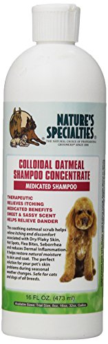 Nature's Specialties Colloidal Oatmeal Pet Shampoo, 16-Ounce (Colloidal Oatmeal Shampoo)