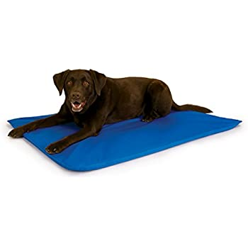 K&H Pet Products Cool Bed III Cooling Dog Bed Large Blue 32
