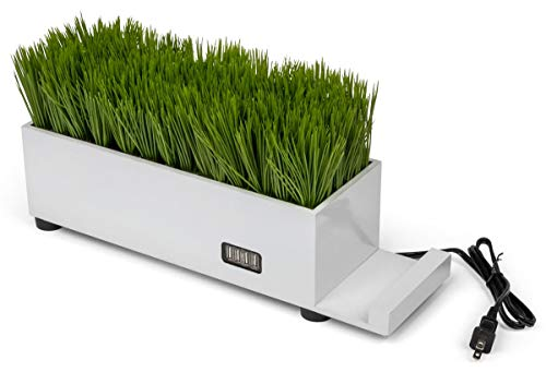 Displays2go Desktop Planter Charging Hub with Artificial Grass - White (FDPPBGWH)