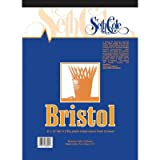 Vellum Finish Bristol Board Pad