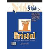 Vellum Finish Bristol Board Pad