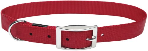 (Dogit Nylon Double Ply Dog Collar with Buckle, X-Large, 20-Inch,)