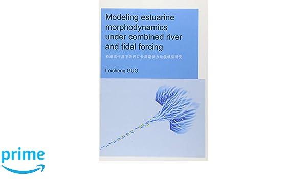 Modeling Estuarine Morphodynamics under Combined River and Tidal Forcing
