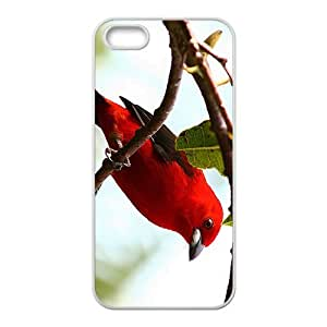 Crow Pheasant Hight Quality Plastic Case for Iphone 5s