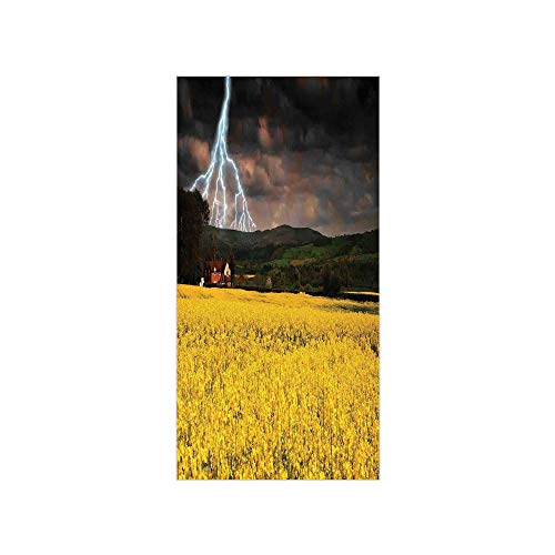 Decorative Privacy Window Film/Thunderstorm Over The Meadow Valley with Scary Dark Sky Rural Farm Scenery/No-Glue Self Static Cling for Home Bedroom Bathroom Kitchen Office Decor Yellow Green -