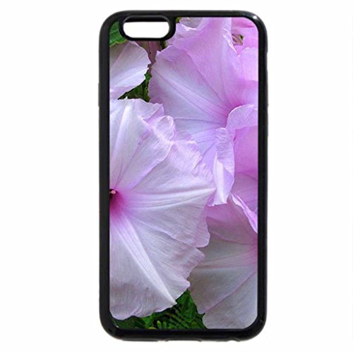 iPhone 6S / iPhone 6 Case (Black) Mauves