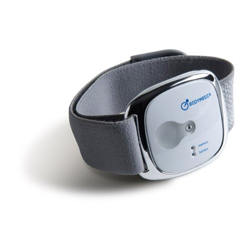 calorie armband