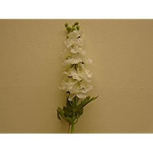 "2 Sprays CREAM Delphinium Artificial Silk Flowers 34"" Stems 1343CRWH 103"