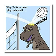ht_3526_2 Rich Diesslins Funny General Cartoons - Why T-Rex does not like volleyball - Iron on Heat Transfers - 6x6 Iron on Heat Transfer for White Material