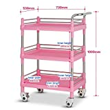 JZX Hospital Trolley, Medical Supplies Rack-Medical Cart Tool 3 Tier Mobile Beauty Salon Spa Trolley, Portable Abs Medical Cart with Heavy-Duty Universal Cart & Brake, Metal Holder, Pink,X-Large