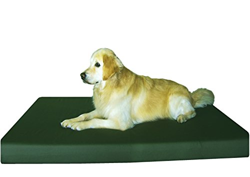 Dogbed4less Jumbo Orthopedic Memory Foam Dog Bed for Extra L