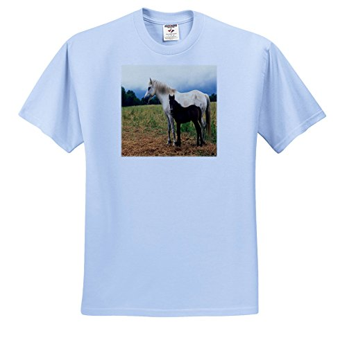 TDSwhite - Horse Equine Photos - White Mare Bay Foal - T-Shirts - Adult Light-Blue-T-Shirt 4XL - T-shirt Adult Foal