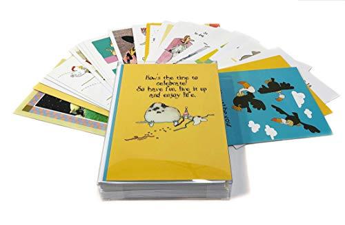 24 Funny Birthday Card Assortment  Bulk Set Birthday Cards  Boxed Set of 24 Cards amp 25 Envelopes  Stonehouse Assortment #1