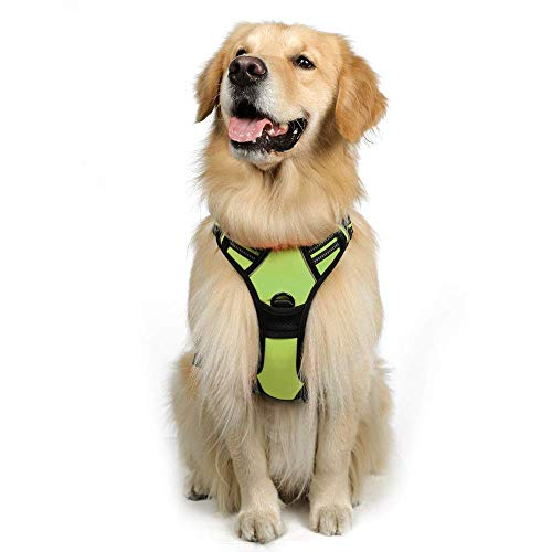 """rabbitgoo Dog Harness,No-Pull Pet Harness with 2 Leash Clips,Adjustable Soft Padded Dog Vest,Reflective No-Choke Pet Oxford Vest with Easy Control Handle for Large Breeds,Green (XL, Chest 20.3-39.6"""")"""