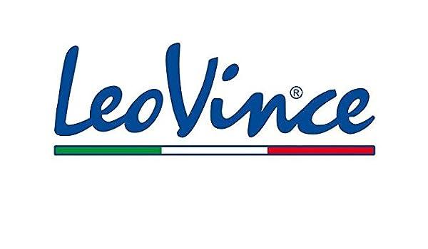 Amazon.com: Leo Vince Factory Strap/Rivet Kit 088421022R: Automotive
