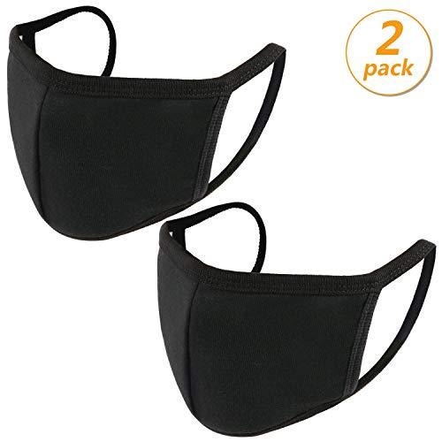 2 Pack Anti Dust