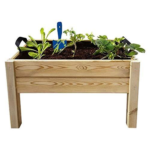 Kit de cultivo Leo Hortalia: Amazon.es: Jardín