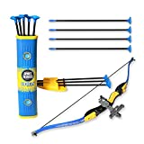 EXERCISE N PLAY Sport Series Archery Shooting Toy Green Bow & Arrow Play Set for Kids with Shoulder-Strapped Quiver and 12 Suction Cup Arrows (Blue)