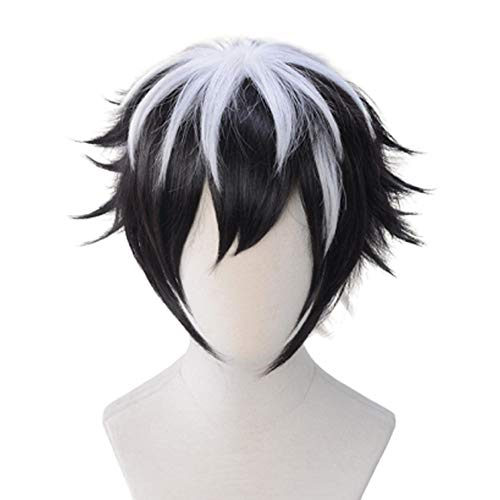 (WKS Charlemagne Cosplay Wig Black and White Gradient Hair)