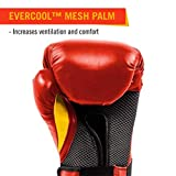 Everlast Elite Pro Style Training Gloves, Red, 12 oz