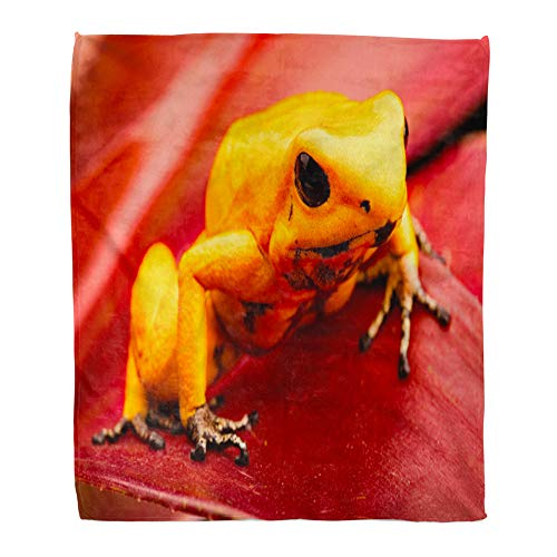 Emvency Throw Blanket Warm Cozy Print Flannel Poison Dart Frog Phyllobates Terribilis Deadly Animal from The Tropical Amazon Comfortable Soft for Bed Sofa and Couch 60x80 Inches