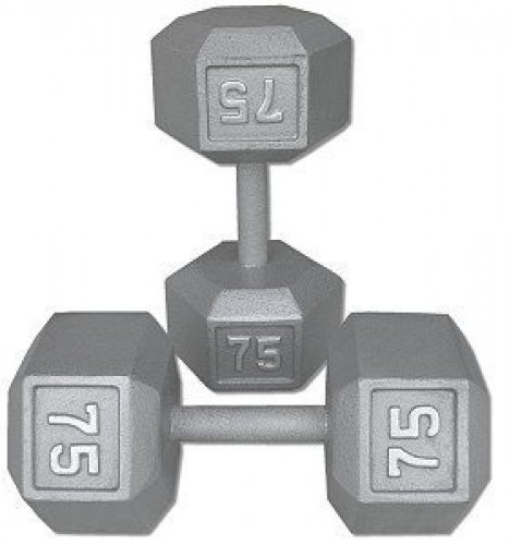 Ader Grey Hex Dumbbell /Cast Iron Dumbbell One Pair