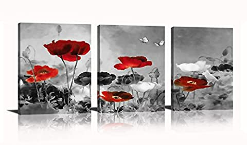 HLJ Arts Modern Poppies Butterfly Fly Over The Black and White Red Flower Abstract Painting Still Life Canvas Wall Art for Living Room Decor 12x16inches (Red And Black Canvas Art)