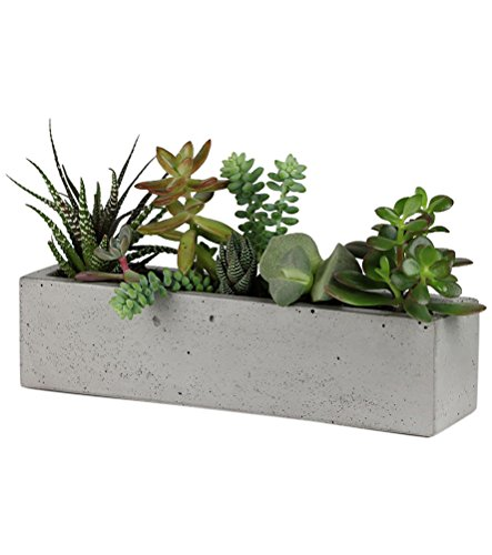 scoutmob-home-concrete-windowsill-planter