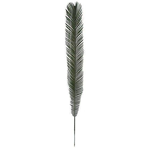 Cycas Palm Branch - SilksAreForever 48