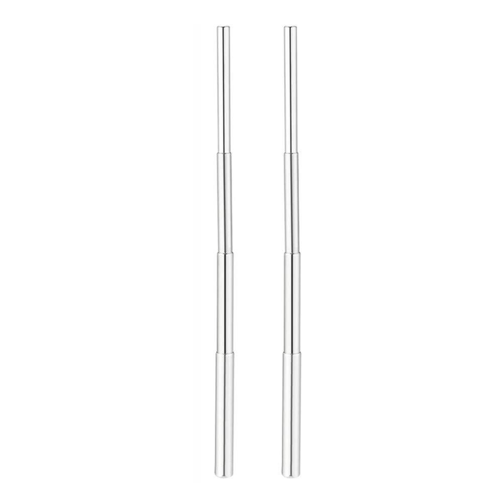 Drinking Straw,FTXJ 2PCS/4PCS Portable Stainless Steel Telescopic Drinking Straw Travel Straw Reusable Straw (silver, 2Pcs)