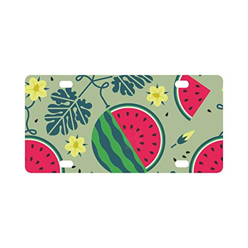 - INTERESTPRINT Ripe Watermelon Black Currant with Leaves and Flowers on Shabby Background. Front License Plate 6