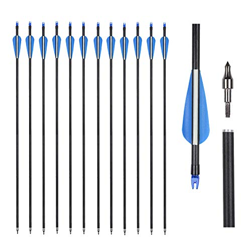 Fiberglass Archery Target Arrows 30 Inch for Youth Children Women Beginner Shooting Practice with Compoud Recurve Bow