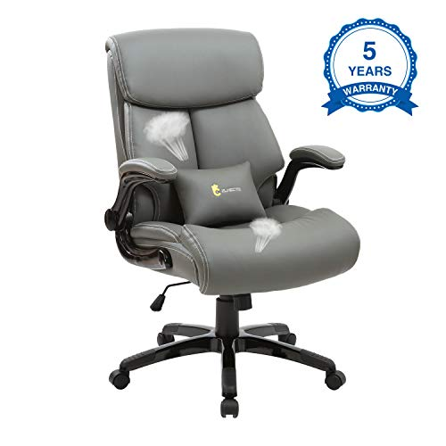 Ergonomic Office Chair,High Back Executive Leather Chair 300 lb Capacity, Reclining Swivel Chair with Lumbar Support by ZLHECTO