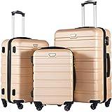 COOLIFE Luggage 3 Piece Set Suitcase Spinner Hardshell Lightweight TSA Lock (Champagne New)
