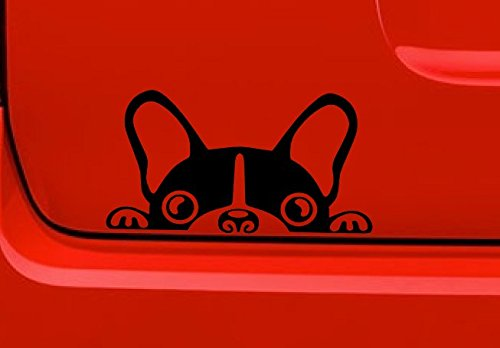 A2 Boston Terrier Vinyl Decal Sticker Car//Truck Laptop//Netbook Window