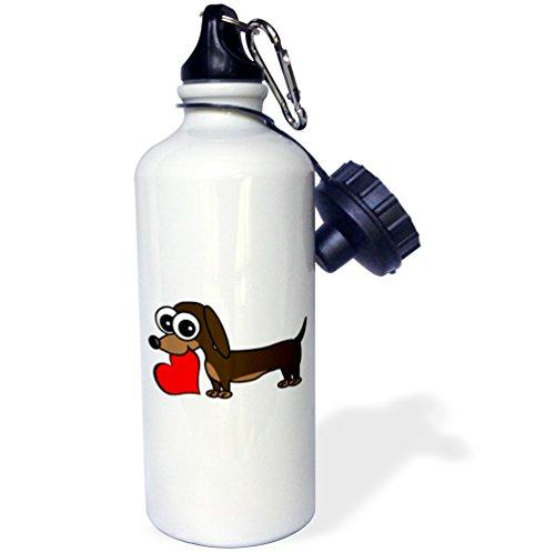 One Dachshund (3dRose wb_6149_1 Dachshund Has My Heart Sports Water Bottle, 21 oz, White)