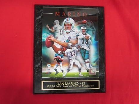 2f4675316 Amazon.com  Dan Marino Miami Dolphins Collector Plaque w 8x10 CAREER ...